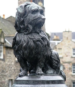 Greyfriars Bobby Image by PublicDomainPictures from Pixabay